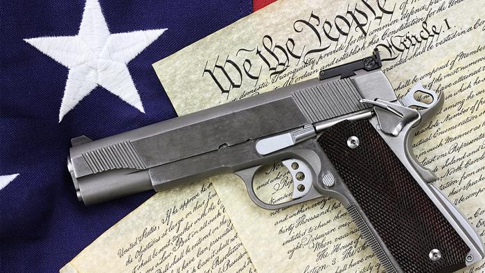 Gun Stocks Get Bump After CA Judge Overturns Assault Weapons Ban; Background Checks Break New Record