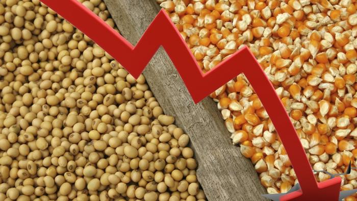 """Corn, Soy Futures Slump As Weather Models """"Flipped Cooler"""""""