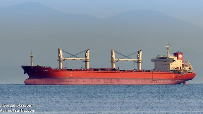 Cargo Vessel Expelled From US Waters AfterDiscovery Of Chinese Invasive Insects