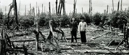Vietnam War - Vietnamese locals posing in the scorched jungle