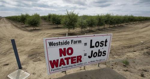 Fallow Land PlaguesCalifornia Farmers Hit By Drought 2