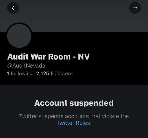 Twitter Suspends 2020 Election Audit Accounts For Multiple States 3