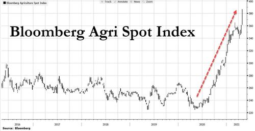 [Image: agri%20index_0.jpg?itok=6Cwgd5iv]