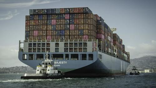"""Shipping Chaos Gives Top Importers """"Massive Competitive Edge"""""""