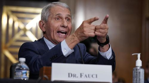 """""""Surprise Surprise – Fauci Lied Again"""": Rand Paul Reacts To Wuhan Bombshell [VIDEO]"""