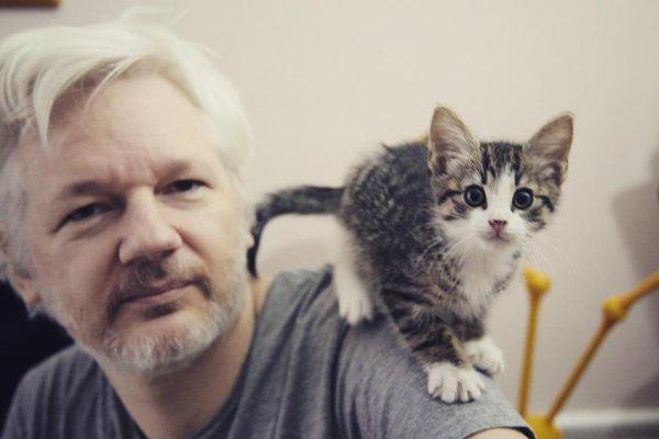 WikiLeaks Sues To Unseal DOJ Charges Against Julian Assange