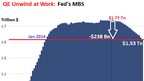 Zero Hedge On A Long Enough Timeline The Survival Rate