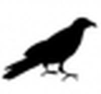 quoth the raven's Photo